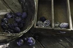 La prune séchée © AGB