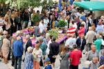 La Fête de la Prune : festive et gourmande